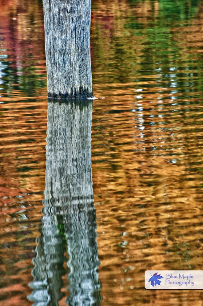 Reflections at Alum Creek II
